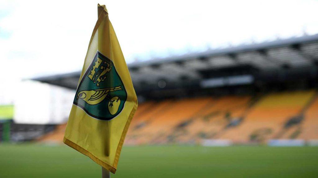 Norwich Flag
